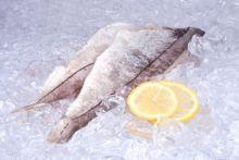 Филе пикши на коже Мурманск от 10 кг